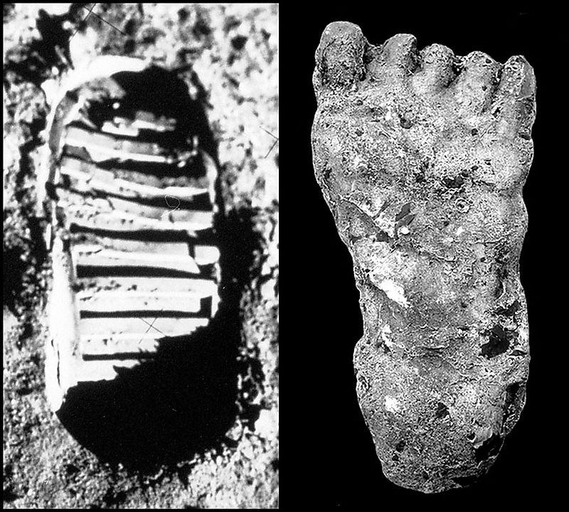 Feet border