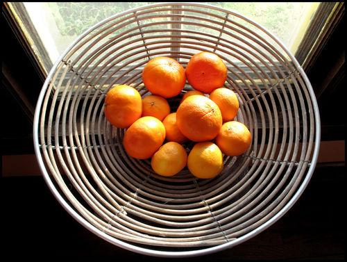Oranges border