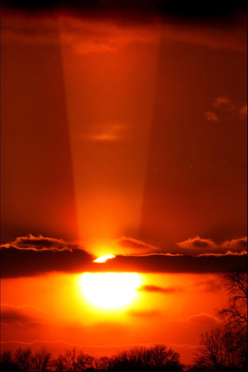 Sunset border