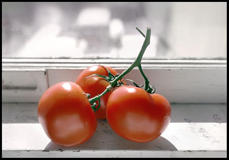 Tomatoe_border